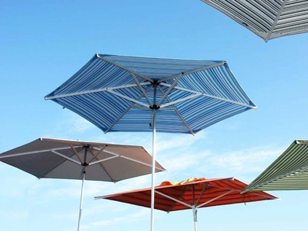 Woodline Umbrella Collection